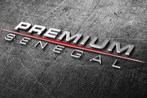 groupe-premium-2013